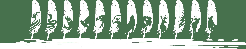 ho-chunk-feathers